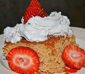 Basic Vanilla or Chocolate Cake Slice